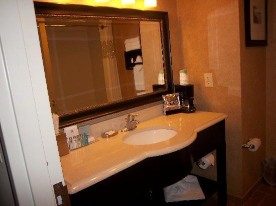 Hampton Inn Atlanta Canton: Bathroom