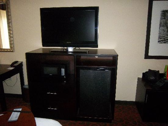 Hampton Inn Atlanta Canton: TV