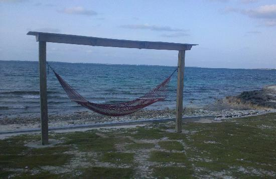 Pelican Beach Villas: Hammocks by the ocean