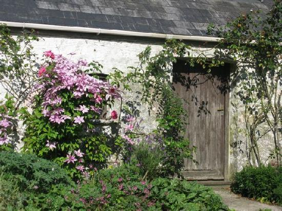 Cefn-y-Dre Country House Bed & Breakfast: Old Carriage House Adjacent to House