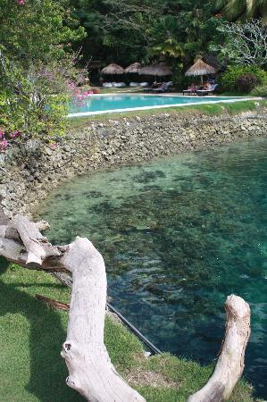 Pearl Farm Beach Resort: view of the pool from the pagoda