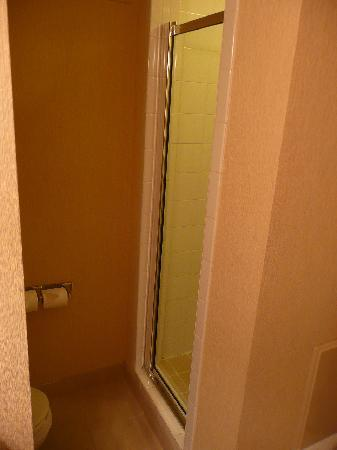 Holiday Inn Express Hotel & Suites-DFW North: Separate shower