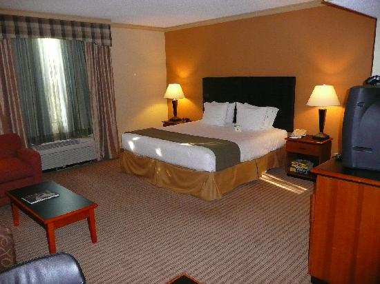 Holiday Inn Express Hotel & Suites-DFW North: King bed