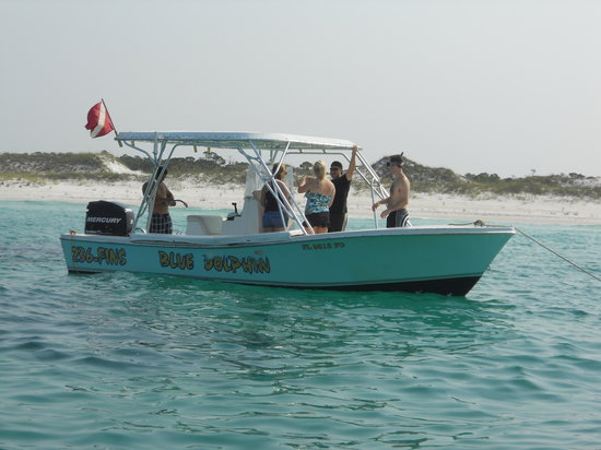 Shell Island Blue Dolphin Tours