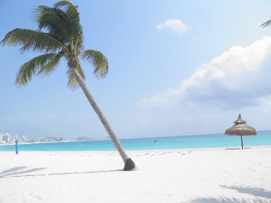 Oleo Cancun Playa: Cancun beach is the real paradise