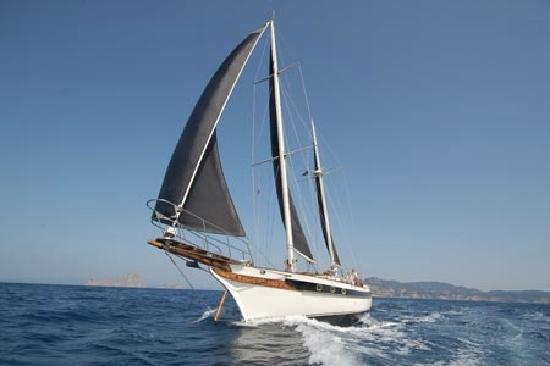 Aqua Marine Boat Charters: The Geisha