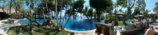 Puri Bagus Lovina: Panorama: piscine