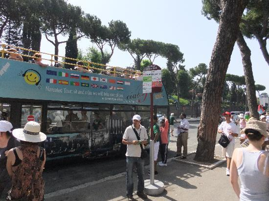 "Blue ""Ciao Roma"" bus"