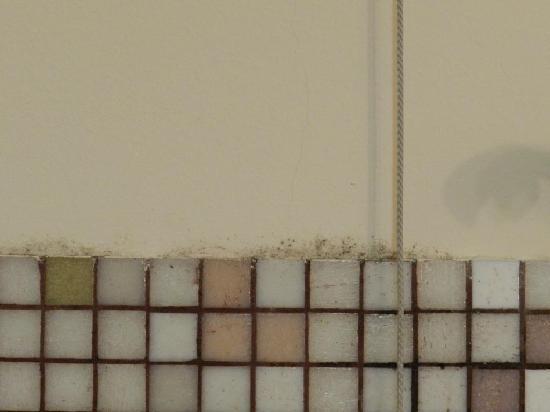 moisissure salle de bain picture of des etrangers hotel. Black Bedroom Furniture Sets. Home Design Ideas