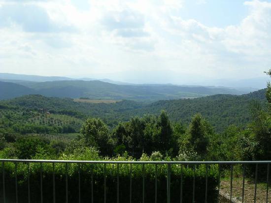 Podere Vignali: Vista sul monte Amiata