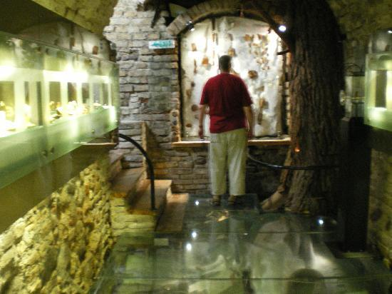 Amber Museum-Gallery (Gintaro Muziejus-Galerija): museum