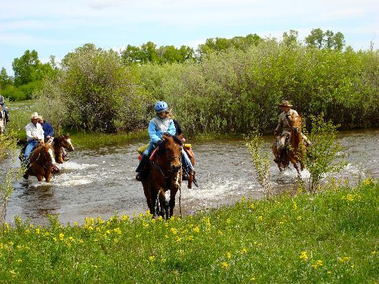 Vee Bar Guest Ranch: Fording the stream