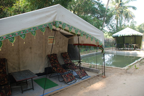 Bhitar Kanika National Park: Nature Camp