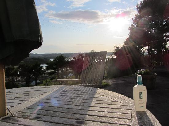 Caladh Guest House: Afternoon sun on terrace and midge repellent!