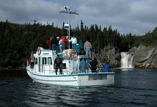 Woody Island, Canada: Our Exciting Boat Tour!