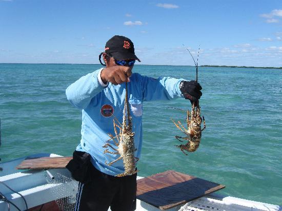 Sian Ka'an Biosphere Reserve: Fresh Lobster - Sian Ka'an