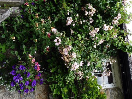 Rugglestone Inn: The floral display on the pub itself