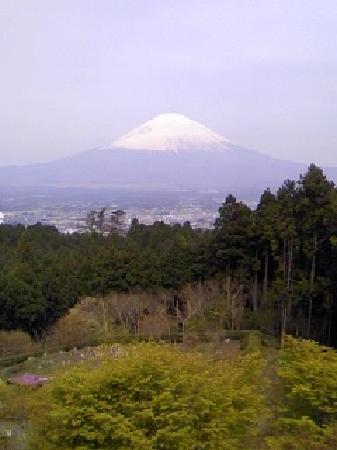 Lala Gotenba Hotel & Resort: 部屋からの富士山