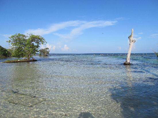 Hacienda Tres Rios: smart part of beach to swim