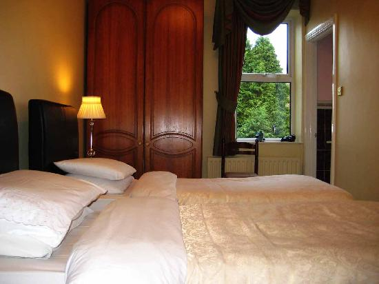 Adare Bed & Breakfast: Double . Twin Bedroom