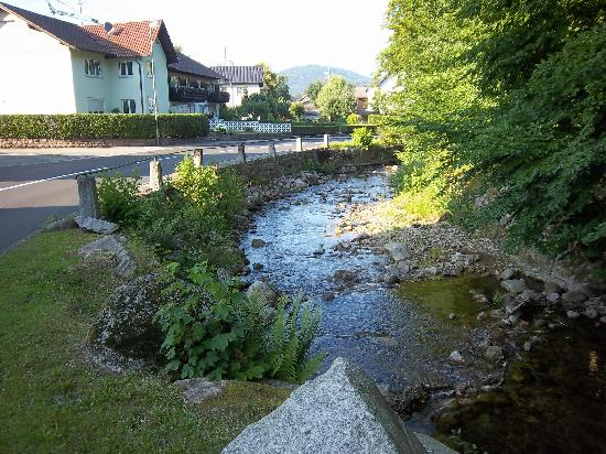 Gasthaus Auerhahn: Creek across the road