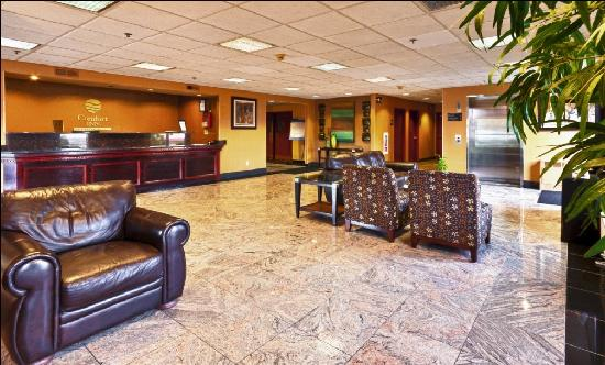 Quality Inn & Suites NJ State Capital Area: Lobby