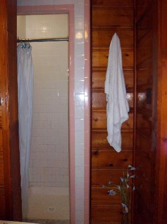 The Catskill Motel : shower