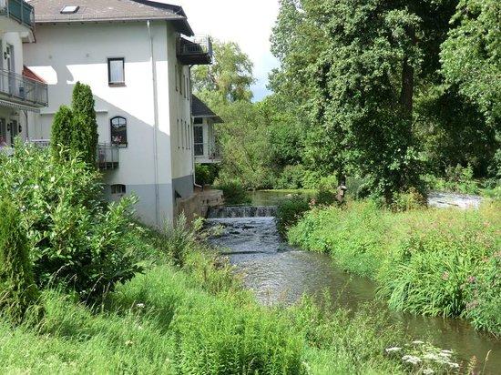 Landhotel Naunheimer Mühle: Garden view left
