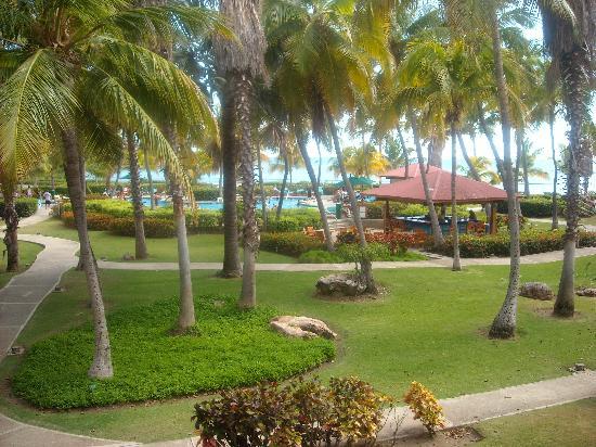 Copamarina Beach Resort & Spa, BW Premier Collection: Zonas comunes