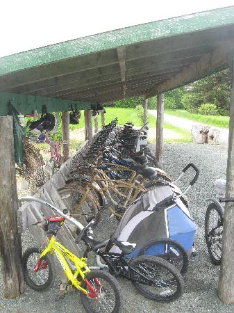 Gustavus Inn at Glacier Bay: Free use of the bikes