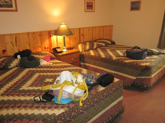 Swiss-Alaska Inn Talkeetna : The room