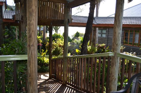 Tamborine Mountain Bed & Breakfast: The walkways to the rooms