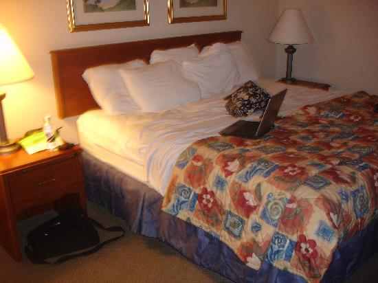 La Quinta Inn St. Louis Hazelwood- Airport North: Bed...