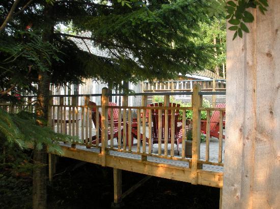 Auberge du Lievre: La terrasse de l'auberge