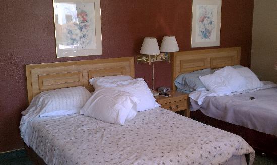 سوبر 8 موتيل - باسادينا/لا إيريا: Room