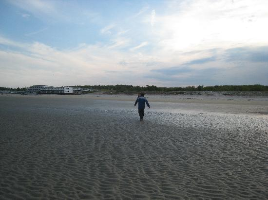 Ogunquit Beach: Beach at sunset (taken on Memorial Day)