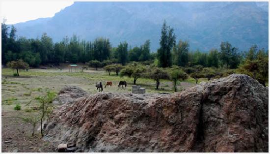 Termas de Cauquenes: Reserva Río Cipreses