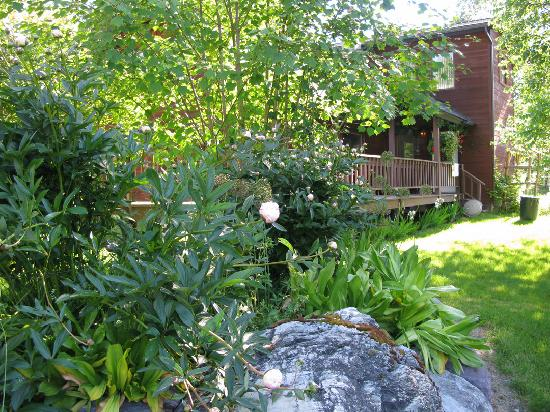 The Bailey's Bed 'n Bale: peonies blooming