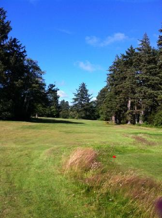 Long Beach, WA: peninsula golf course