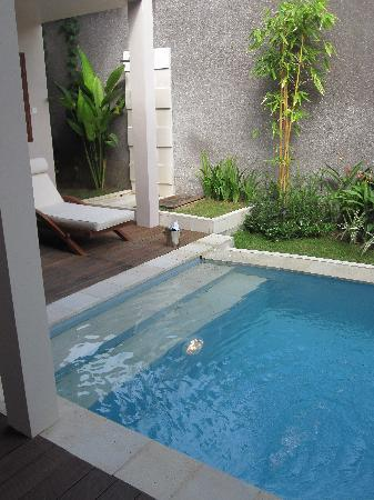 Nusa Dua Retreat and Spa: View from bedroom of private pool