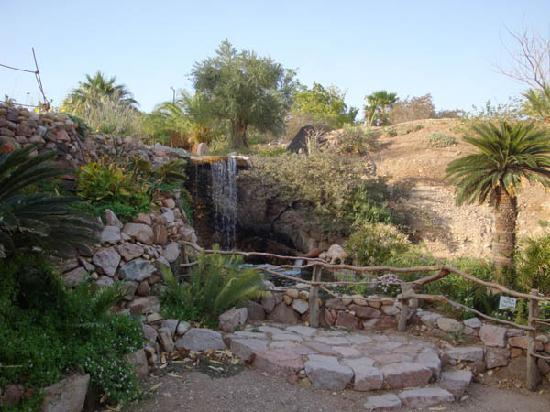 Botanical Garden Of Eilat: top of a nice waterfall they have built - the water is recycled!