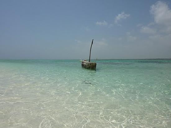 Stephanie Ocean Resort : spiagge da sogno