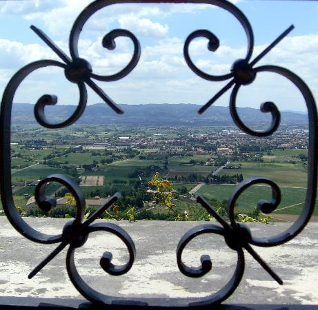 Il Cantinone : View Ristorante Metastasio