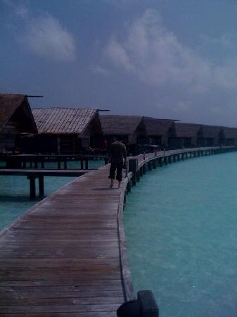 Cocoa Island by COMO: The jetty