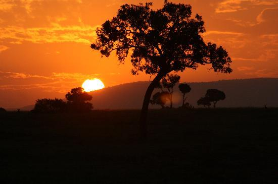 Tunda Day Tours: Sunrise on the Mara