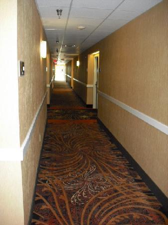 Hampton Inn and Suites Cleveland Southeast Streetsboro: 1st floor hallway