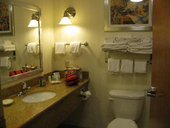 Comfort Suites Hummelstown-Hershey: bathroom
