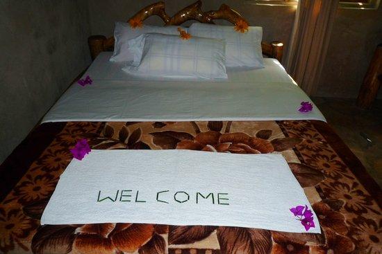 Wagtail Eco Safari Camp: bed