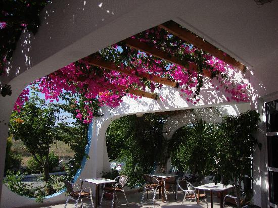 Nirvana Beach Hotel : Pretty flowers
