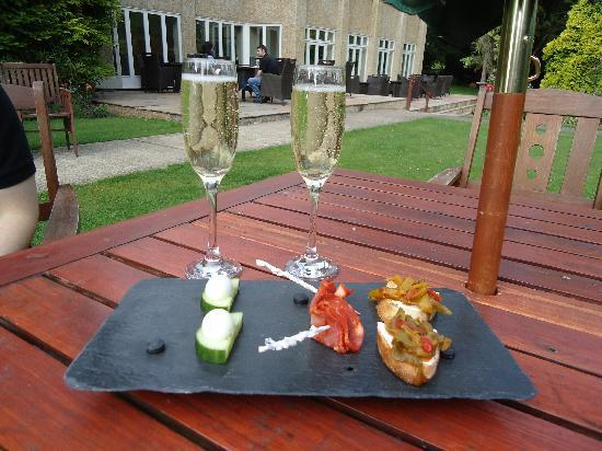 Woodborough Hall: champagne and canapes
